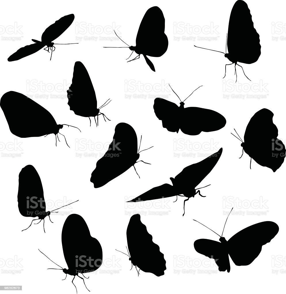 다채로운 나비 모든 royalty-free 다채로운 나비 모든 곤충에 대한 스톡 벡터 아트 및 기타 이미지