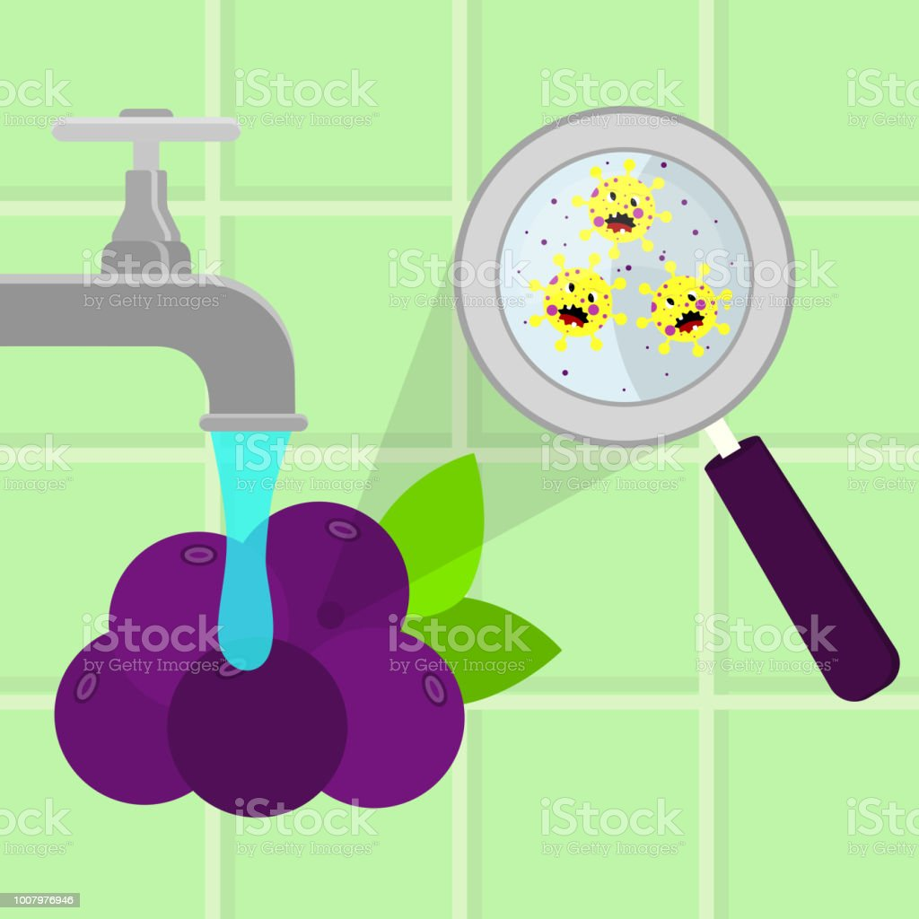 Acai fruit contaminated with microbes vector art illustration