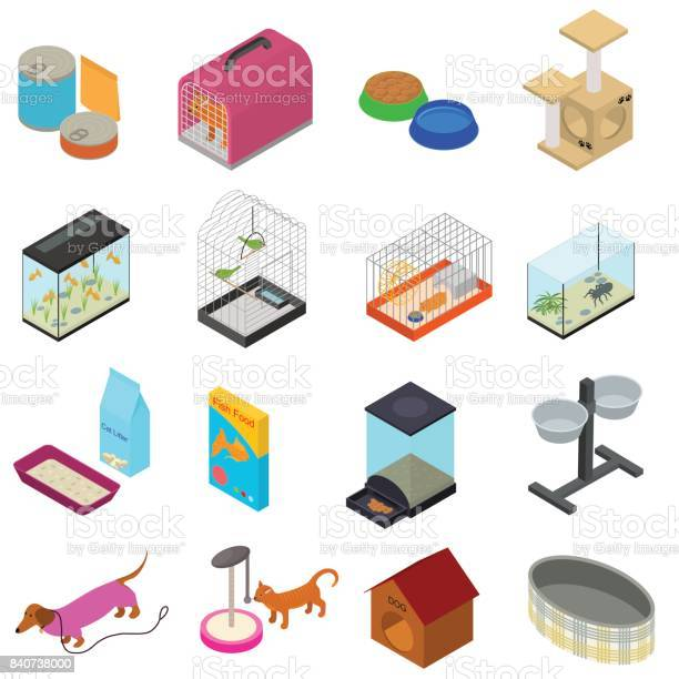 Accessories for domestic pets set care animal isometric view vector vector id840738000?b=1&k=6&m=840738000&s=612x612&h=hnfjgodxrsygijpx1lmvkwstackamxbwsaybztcclba=