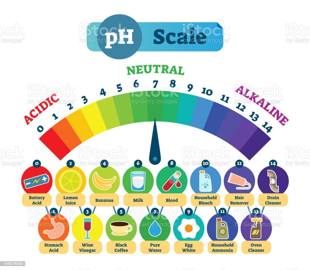 escala de ph de los alimentos