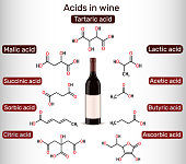 istock Acids in wine. Tartaric, malic, lactic, citric, acetic, ascorbic, butyric, sorbic, succinic acid. Skeletal chemical formulas 1312123631