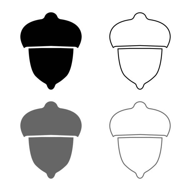 acorn wald nuss-ikone setzen graue schwarze farbe illustration umriss flaches stil einfaches bild - zeichensetzung stock-grafiken, -clipart, -cartoons und -symbole