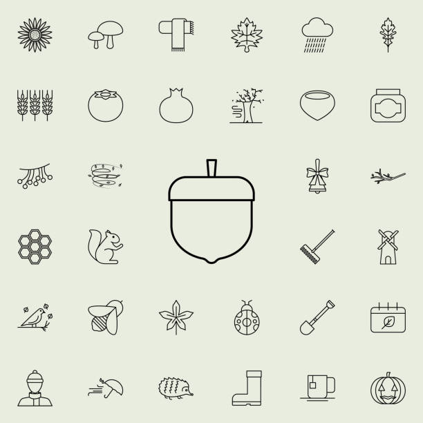 eichel-symbol. herbst symbole universal set für web und mobile - zeichensetzung stock-grafiken, -clipart, -cartoons und -symbole