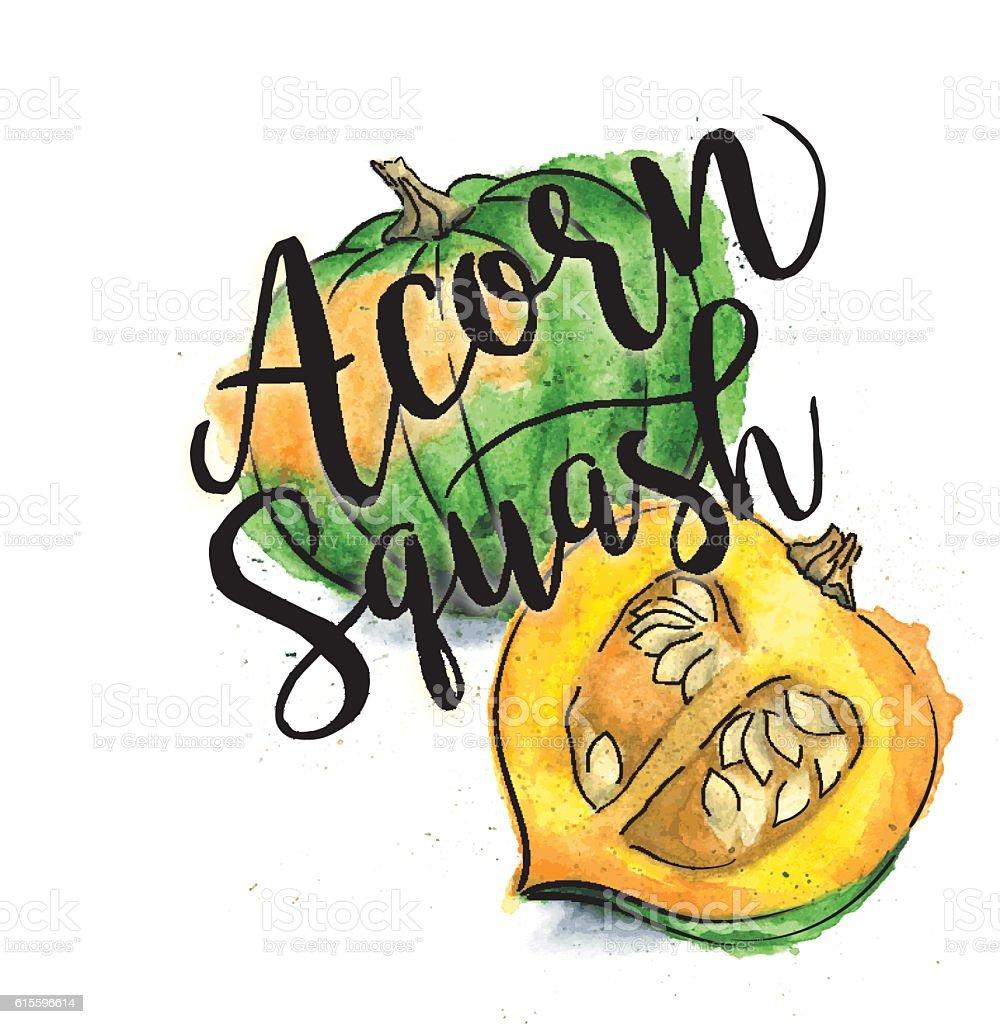 royalty free acorn squash clip art vector images illustrations rh istockphoto com acorn clip art free printable acorn clip art black and white