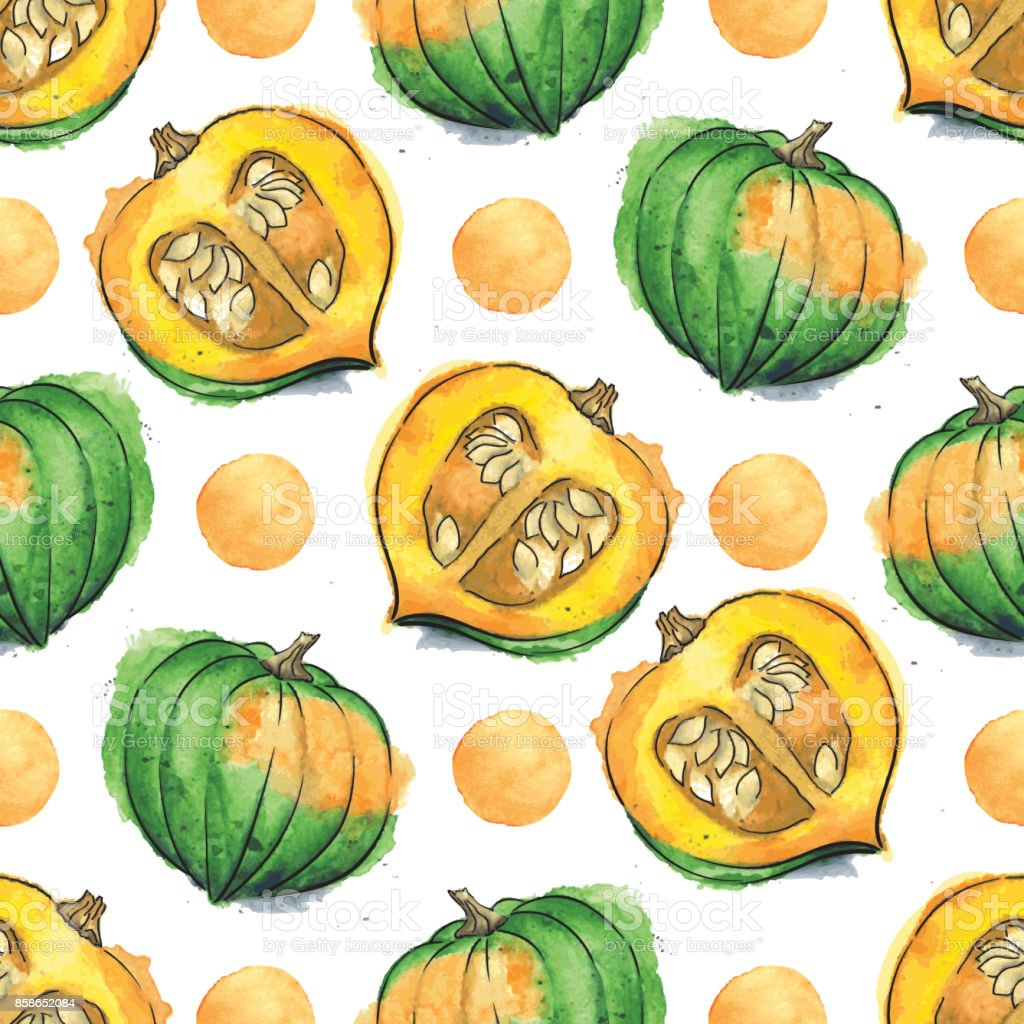 Acorn Squash Watercolor Vector Seamless Pattern With Watercolor Dots vector art illustration