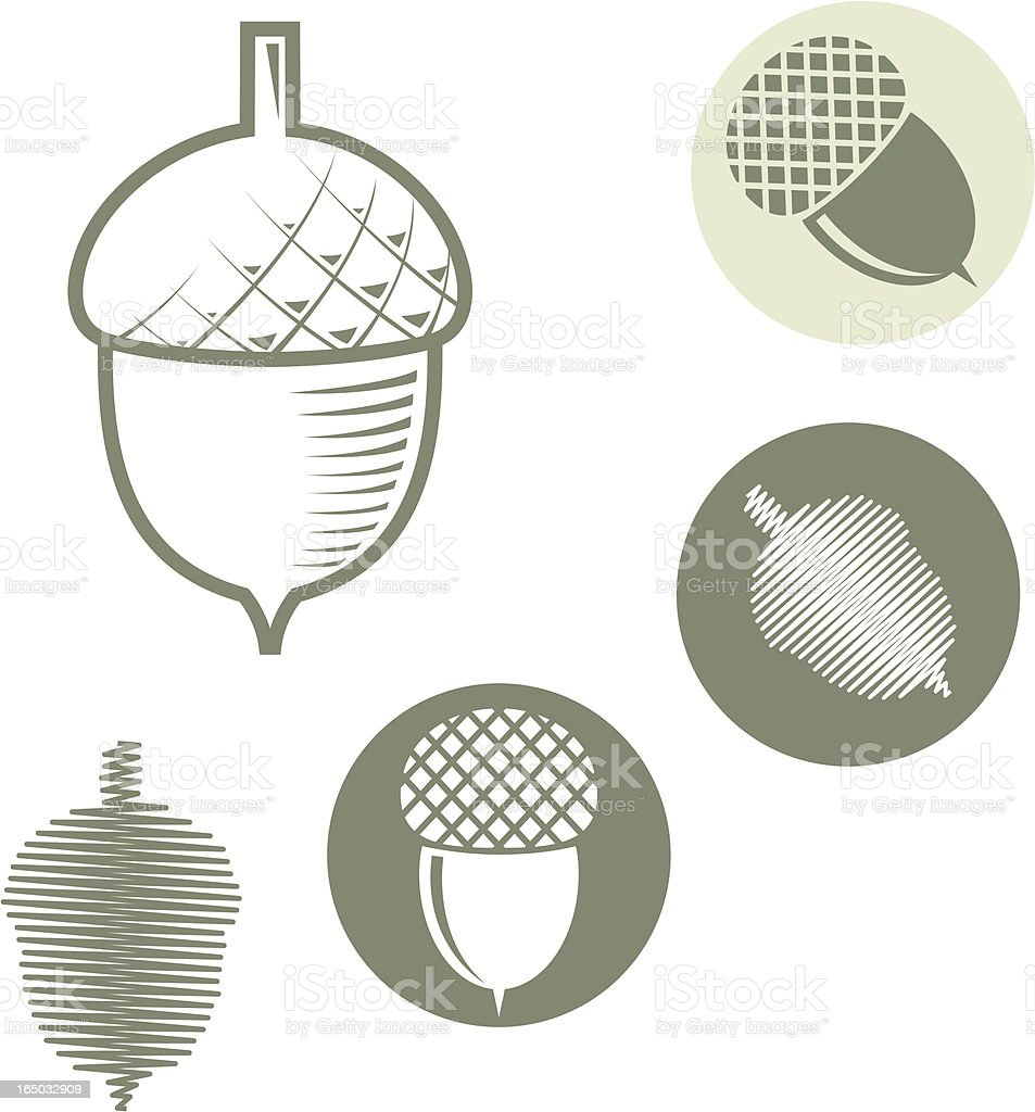 Acorn - vector symbols vector art illustration