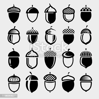 Collection acorns set, edit size and color, vector