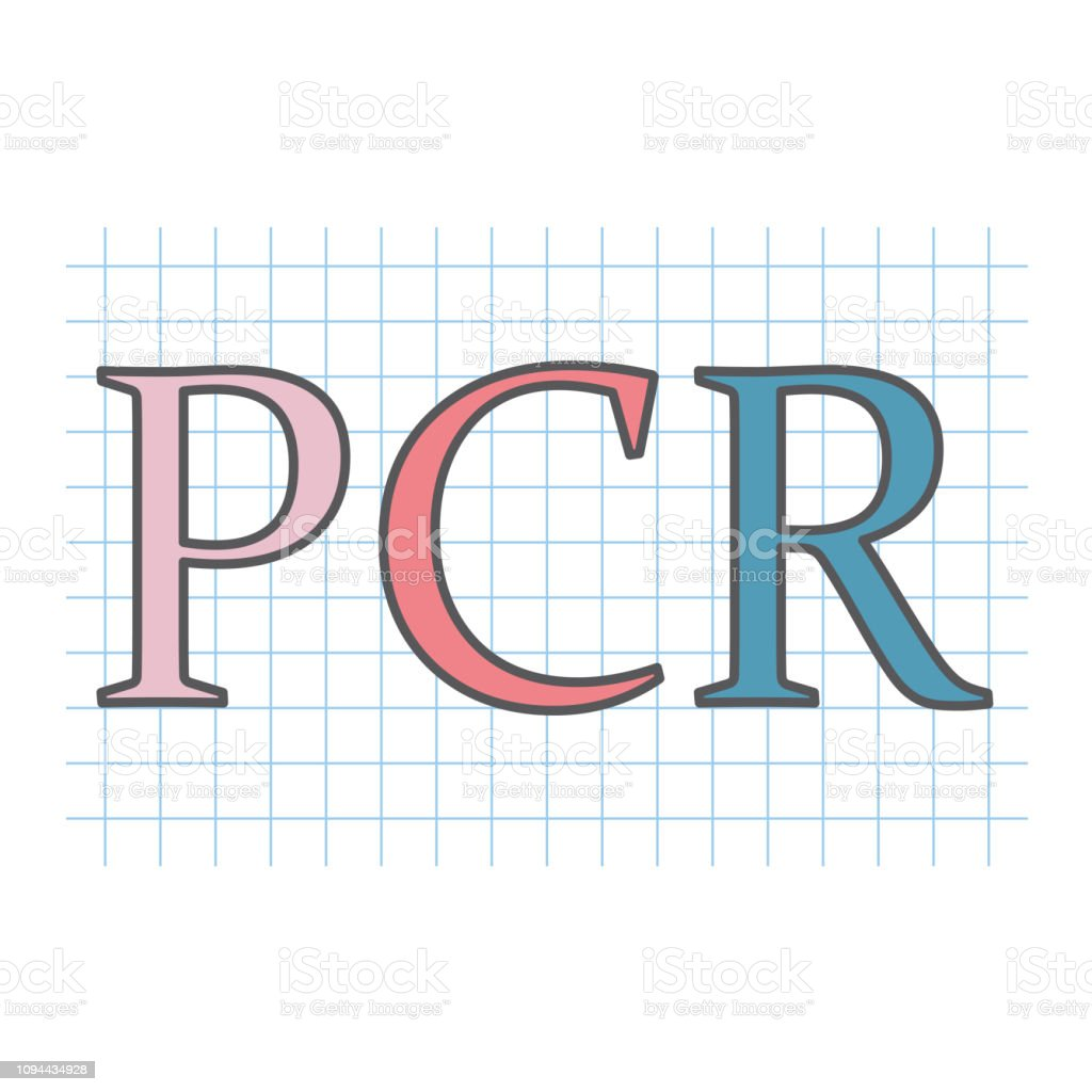 PCR (Polymerase Chain Reaction) acronym on checkered paper sheet vector art illustration