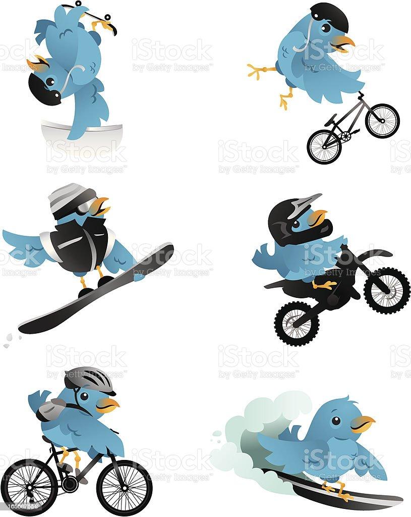 Action Sports birds royalty-free stock vector art