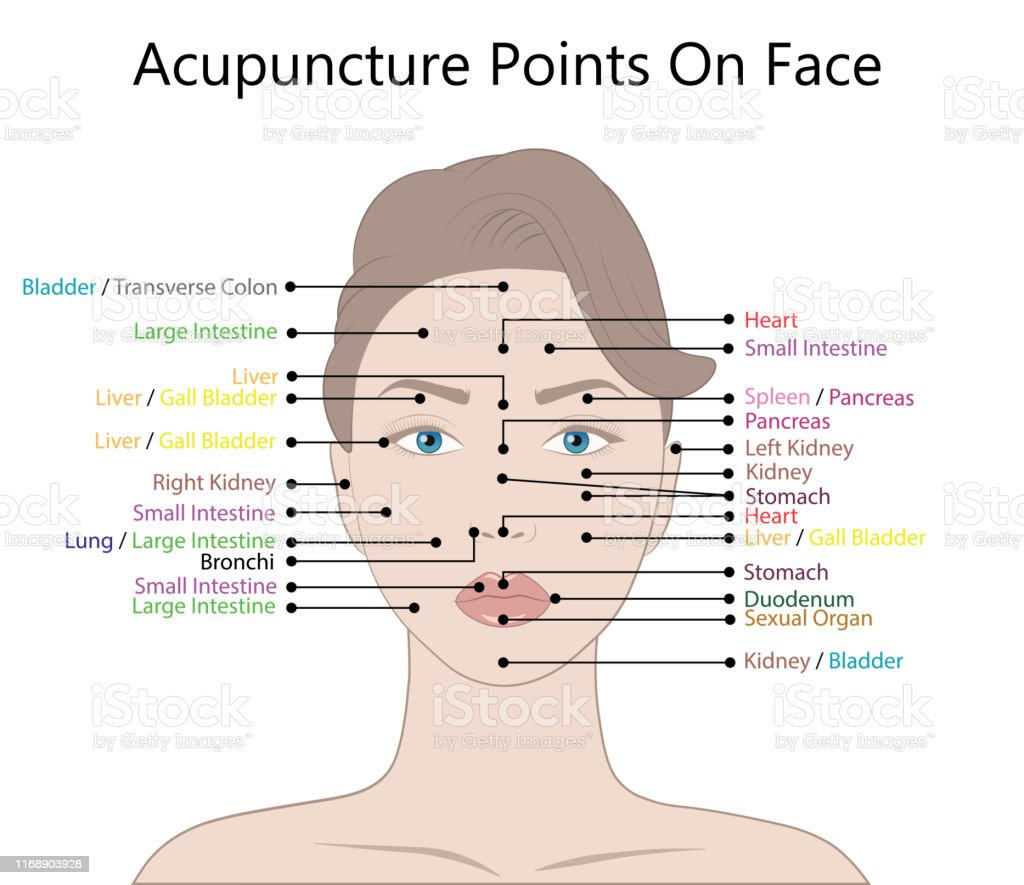 Active Acupuncture Points On The Facevector Illustration ...