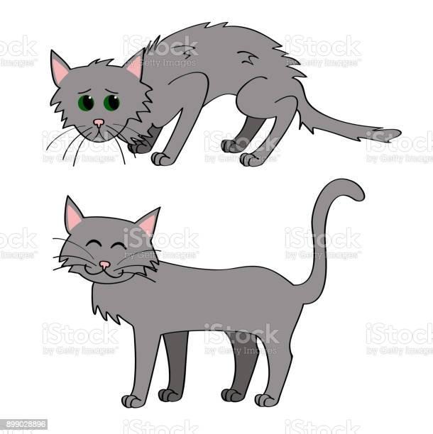 Adopt a cat vector id899028896?b=1&k=6&m=899028896&s=612x612&h=my4gziq9u2krxk3einvts02vnpaktorguubgg3hutkg=