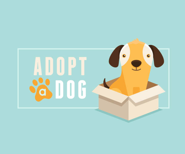 Adopt a dog banner design Vector illustration in  flat style - adopt a dog banner design - smiling cartoon puppy in a box animal shelter stock illustrations