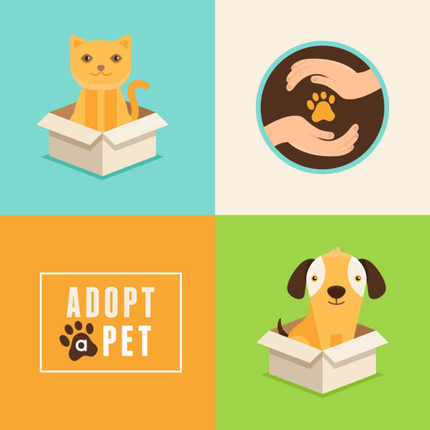 Adopt a pet Vector icons in flat style - adopt a pet - emblems and illustrations with cat and dog animal shelter stock illustrations