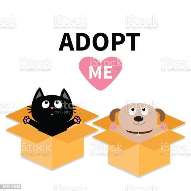 Adopt me dog cat inside opened cardboard box vector id656610936?b=1&k=6&m=656610936&s=612x612&h=jmnroo63jru7mn3tdv5ppfh9iyiar1hplr5a iawsm4=
