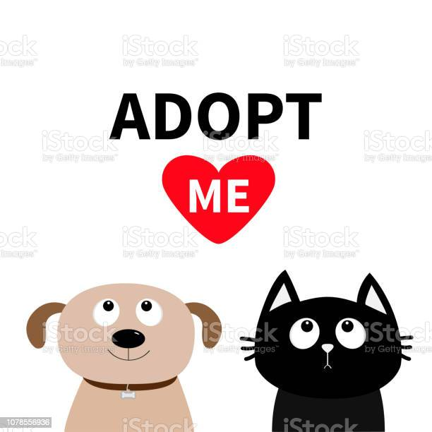 Adopt me dont buy dog cat pet adoption puppy pooch kitty cat looking vector id1078556936?b=1&k=6&m=1078556936&s=612x612&h=o6pqpkgoeeyta oqfr57iptlsmcrber7emtovtjzxha=
