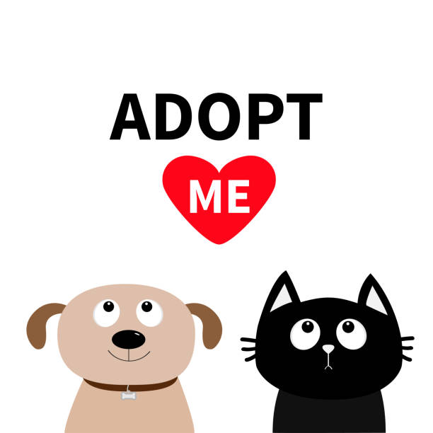 Codes On Adopt Me 2019 | StrucidCodes.com