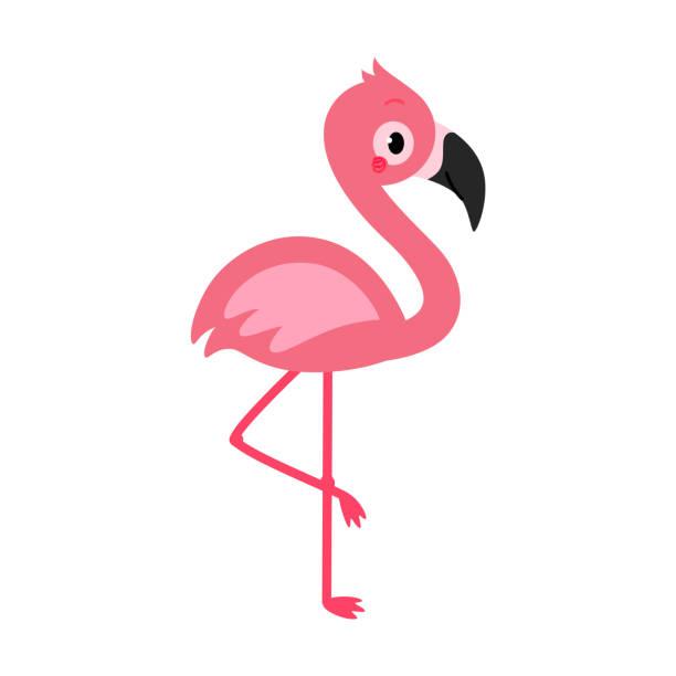 adorable flamingo in flat style. - flamingo stock illustrations
