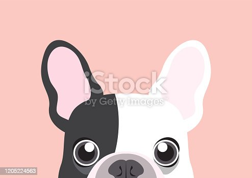 Cute french bulldog is hungry looking at you below the table. This artwork can use for design templates such as cute paper cards, mugs, bags, T-shirts, etc.