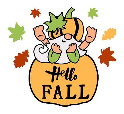 Adorable gnome with pumpkin. Hello Fall.
