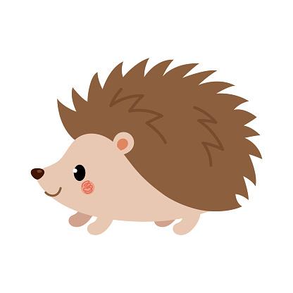 Adorable hedgehog in modern flat style. Vector.