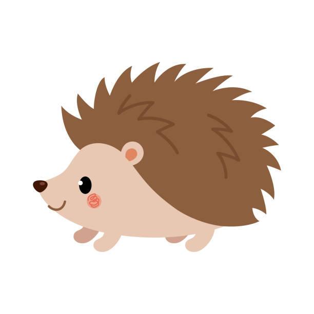 15,807 Hedgehog Illustrations & Clip Art - iStock