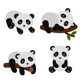 Adorable pandas in flat style. Vector illustration isolated on white background.