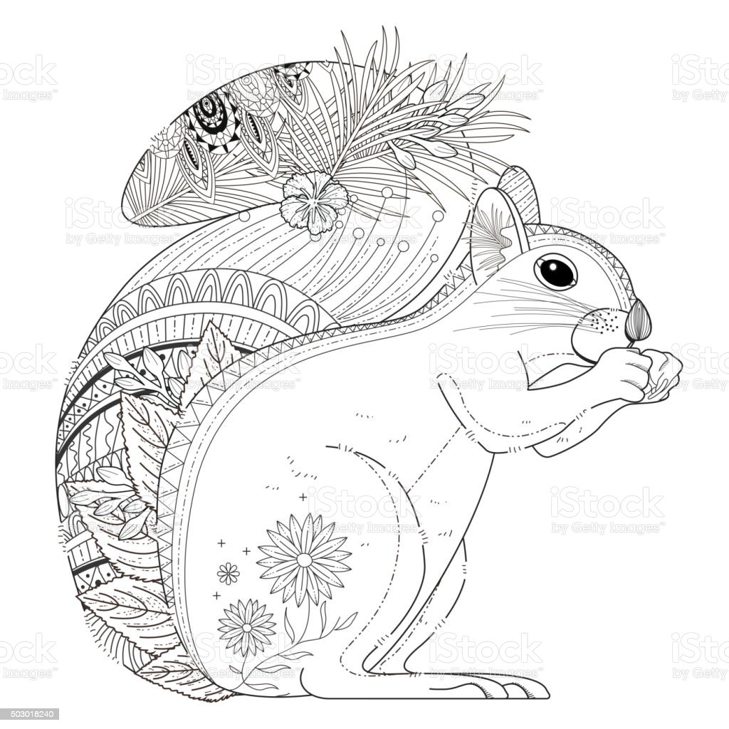 Adorable Squirrel Coloring Page Stock Illustration - Download