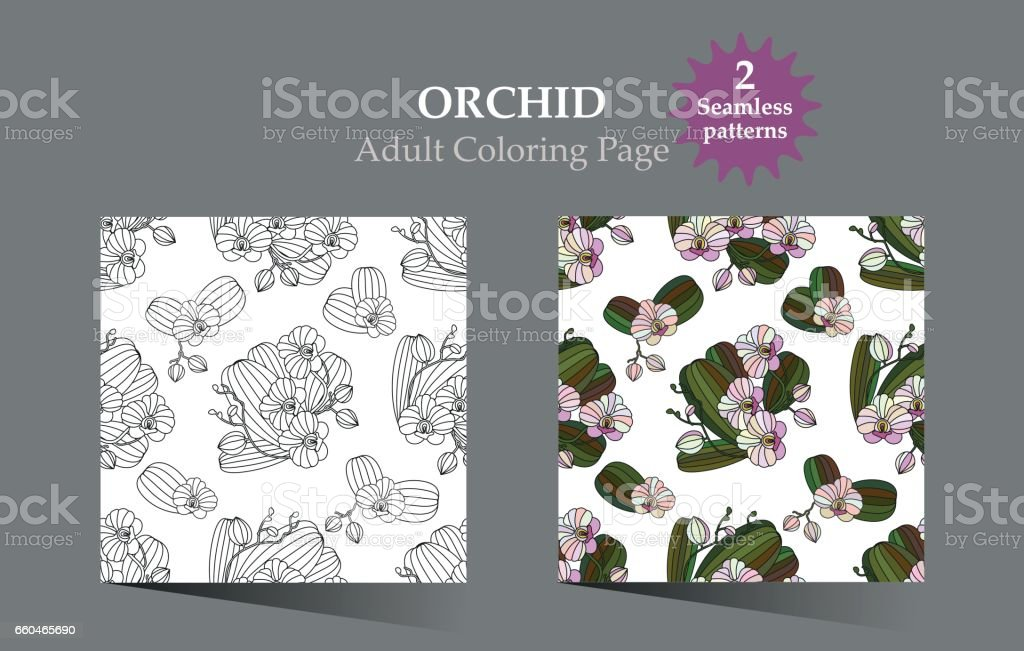 Coloriage Arbre Anti Stress.Coloriage Adulte Antistress Modele Vectoriel Avec Orchidee