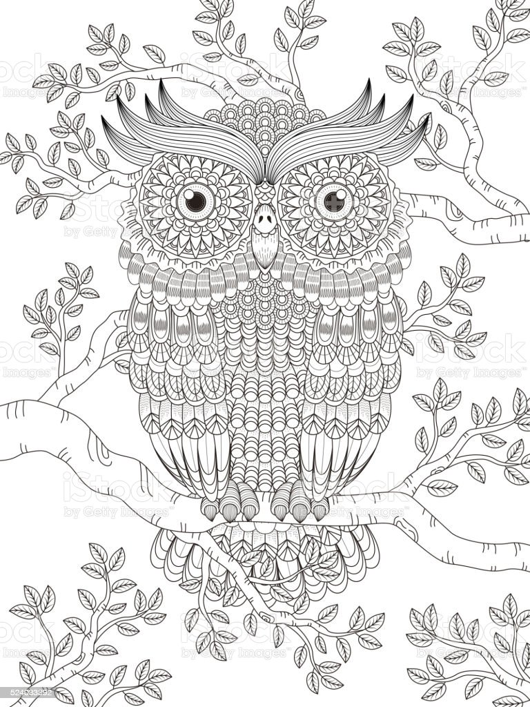 adult coloring page with gorgeous owl vector art illustration