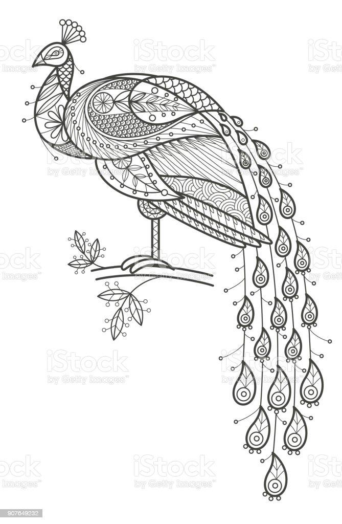 Yetişkin Renklendirme Tavus Kuşu Stok Vektör Sanatı Animasyon