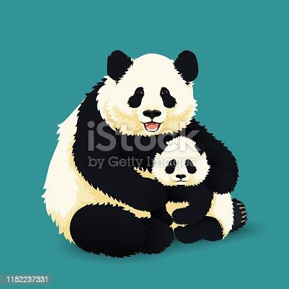 Panda gigante adulto abrazando Panda bebé. Familia de osos chinos. Madre, padre e hijo. Especies raras y vulnerables.