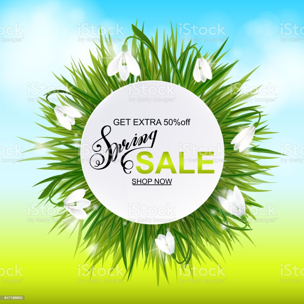 Advertisement about the spring sale on background with grass and daffodil narcissus flowers