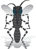 Aedes aegypti Mosquito mascot stilt front