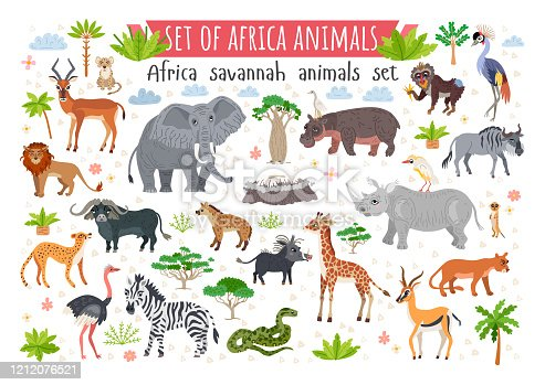 Africa savannah animals set. Wild tropic animals collection in flat style isolated on white background. Including elephant, giraffe, zebra, snake, rhino, parrot, lion, hippo, leopard, monkey, meerkat