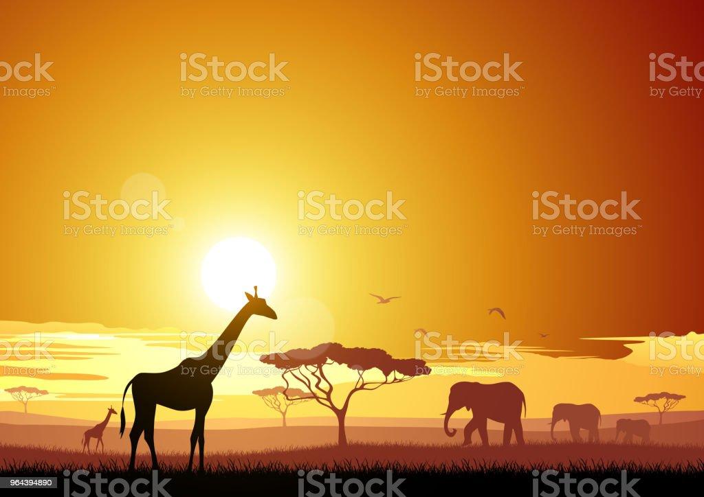 A África - Vetor de Animal selvagem royalty-free