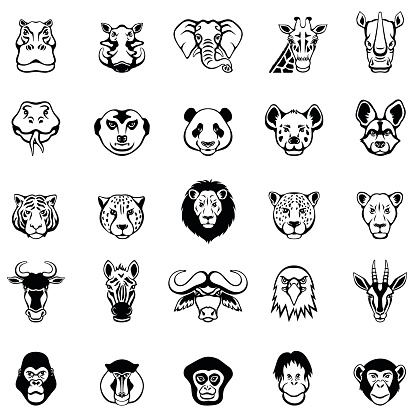 African Animal Faces