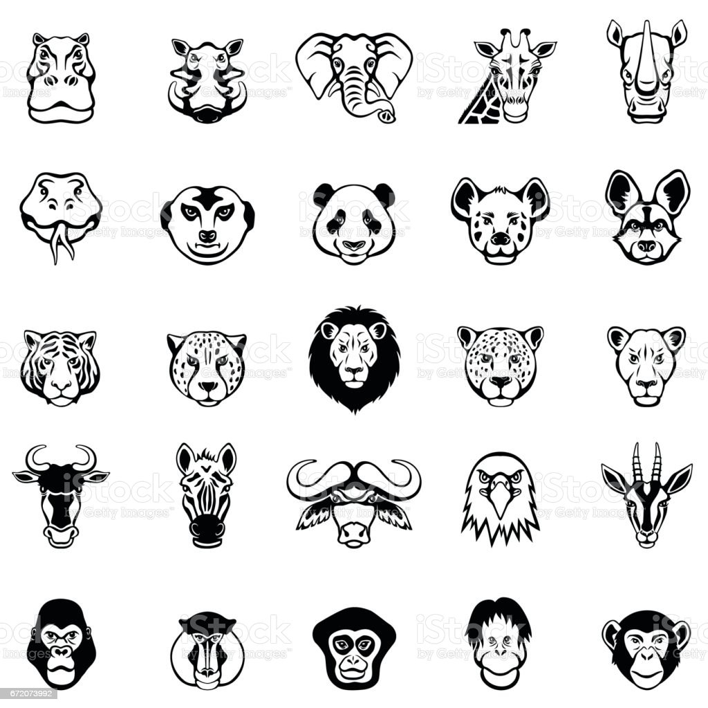 African Animal Faces vector art illustration