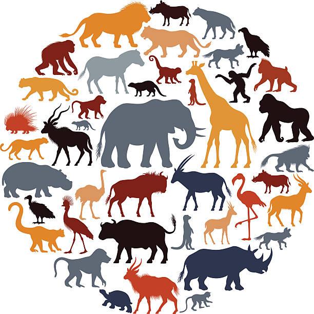 Silhuetas de animais africanos colagem - ilustração de arte em vetor