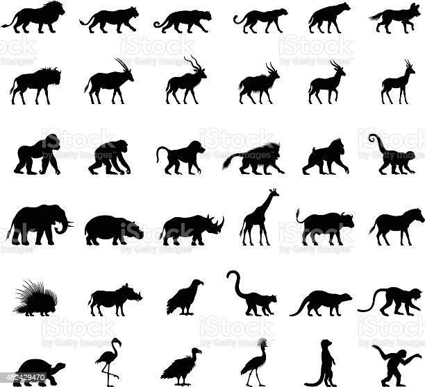 African animal silhouettes vector id482429470?b=1&k=6&m=482429470&s=612x612&h=gxg3agrzufpl0r7q65edgwquhwcqr7udclfmru0l2fu=