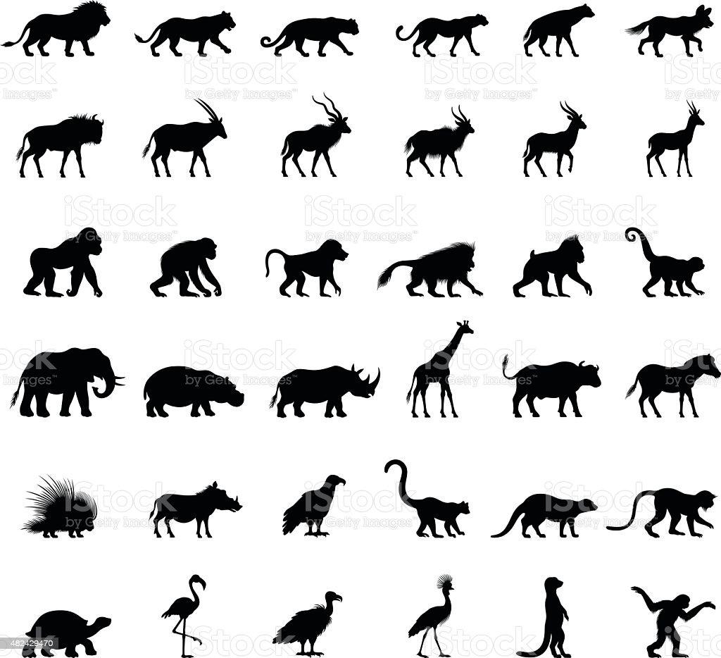 Afrikanische Tiere Silhouetten – Vektorgrafik