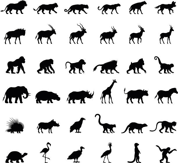 African Animal Silhouettes vector art illustration