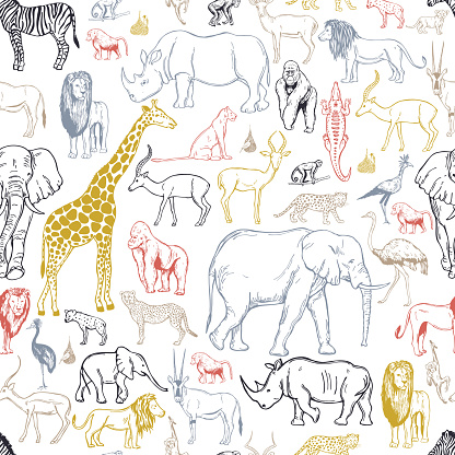 Hand drawn african animals and birds . Vector background.