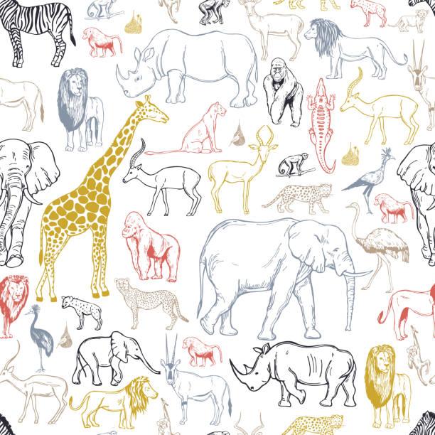 ilustraciones, imágenes clip art, dibujos animados e iconos de stock de animales y aves africanos. fondo vectorial. - conceptos y temas