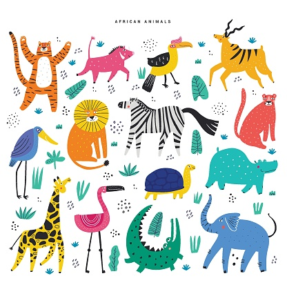 African animals and plants flat illustrations set