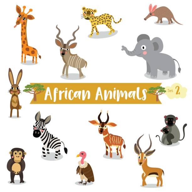afrikanische tiere cartoon auf weißem hintergrund. vektor-illustration. set 2 - ameisenbär stock-grafiken, -clipart, -cartoons und -symbole