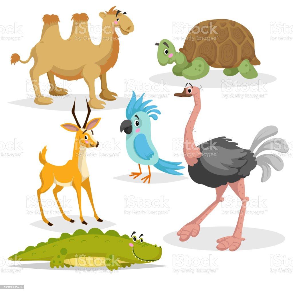 Africanos animais dos desenhos animados em conjunto. Gazzelle anthelope, crocodilo, camelo-bactriano, tartaruga gigante africana, papagaio e avestruz. Coleção de animais selvagens de zoológico. Ilustrações vetoriais isoladas no fundo branco. - ilustração de arte em vetor