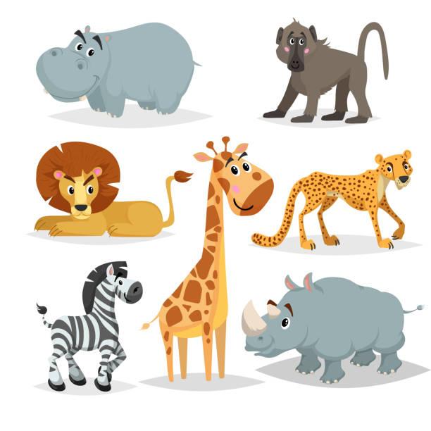 アフリカの動物漫画のセット。カバ、ヒヒ猿、ライオン、キリン、チーター、シマウマ、サイ。動物園哺乳類のコレクションです。白い背景に分離されたベクトルのイラスト。 - 哺乳類点のイラスト素材/クリップアート素材/マンガ素材/アイコン素材