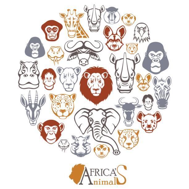 アフリカの動物カレッジ ベクターアートイラスト