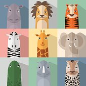 African animals collection. Flat animal icon set with shadow.