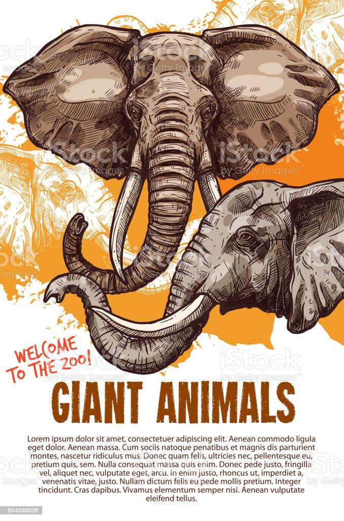 アフリカの動物象動物園ベクトル ポスター ベクターアートイラスト